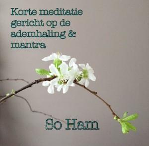 YB afbeelding meditatie ademhaling mantra So Ham